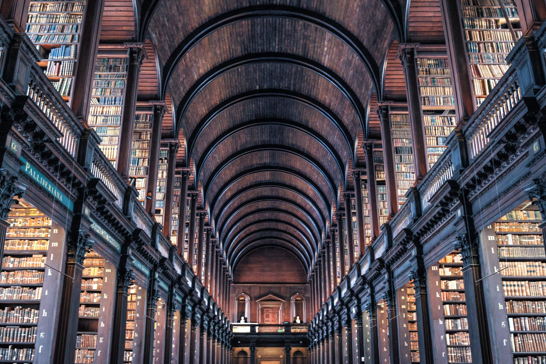 Bublioteka - ciekawostki na temat ksiązek