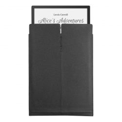 Etui PocketBook InkPad X - wsuwane