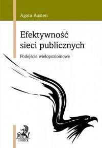Efektywność sieci publicznych. Podejście wielopoziomowe - Agata Austen