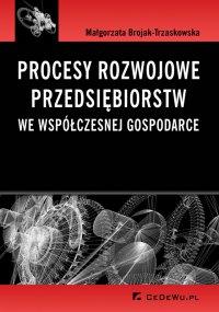 Procesy rozwojowe przedsiębiorstw we współczesnej gospodarce - Małgorzata Brojak-Trzaskowska