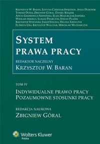 System prawa pracy. TOM IV. Indywidualne prawo pracy. Pozaumowne stosunki pracy - Aneta Giedrewicz-Niewińska