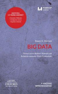 Big Data. Krótkie Wprowadzenie 30 - Dawn E. Holmes