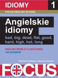 Angielskie idiomy. Zestaw 1 - Ewelina Zinkiewicz