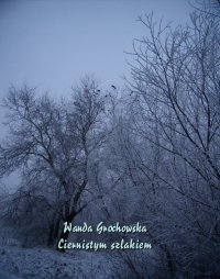 Ciernistym szlakiem. Opowiadanie z czasów prześladowania Unii - Wanda Grochowska