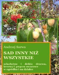 Sad inny niż wszystkie - Andrzej Sarwa