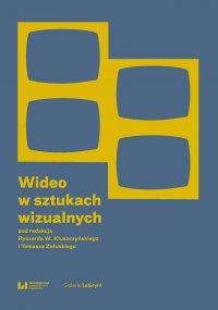 Wideo w sztukach wizualnych - Ryszard W. Kluszczyński