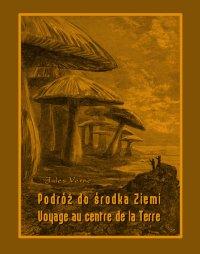 Podróż do środka Ziemi. Voyage au centre de la Terre - Jules Verne, Anonim