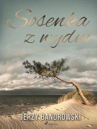 Sosenka z wydm - Jerzy Bandrowski