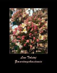 Zmartwychwstanie - Lew Tołstoj