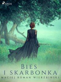 Bies i skarbonka - Maciej Roman Wierzbiński