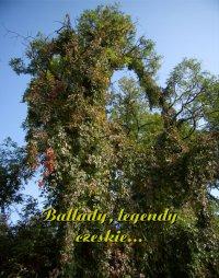 Ballady, legendy czeskie... - Antologia