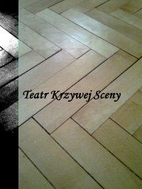 Teatr Krzywej Sceny - Łukasz Szulc
