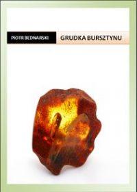 Grudka bursztynu - Piotr Bednarski