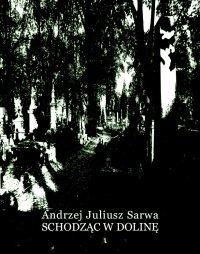 Schodząc w dolinę - Andrzej Juliusz Sarwa