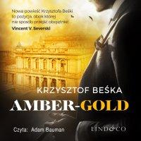 Amber Gold. Detektyw Stanisław Berg. Tom 1 - Krzysztof Beśka