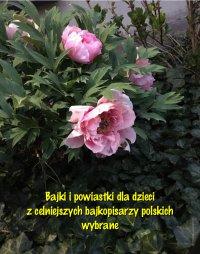 Bajki i powiastki dla dzieci z celniejszych bajkopisarzy polskich wybrane - Antologia