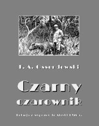 Czarny czarownik. Relacja z wyprawy do Afryki 1926 r. - Antoni Ferdynand Ossendowski