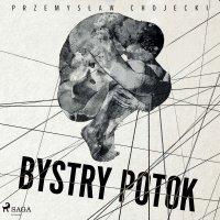 Bystry potok - Przemysław Chojecki