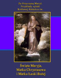 Za Przyczyną Maryi. Przykłady opieki Królowej Różańca św. Święta Maryja, Matka Chrystusowa i Matka Łaski Bożej - Teodor Jakub Naleśniak
