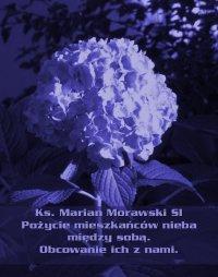 Pożycie mieszkańców nieba między sobą. Obcowanie ich z nami. - Marian Morawski
