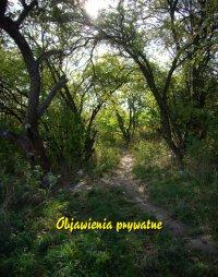 Objawienia prywatne - Antologia