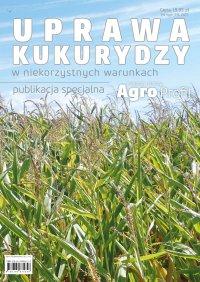 Uprawa kukurydzy w niekorzystnych warunkach - Opracowanie zbiorowe