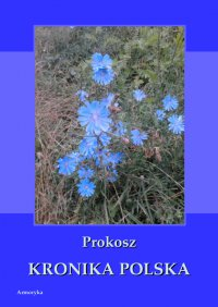 Kronika polska - Prokosz