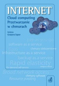 Internet. Cloud computing. Przetwarzanie w chmurach - Grażyna Szpor