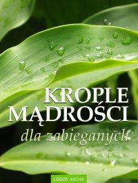 Krople mądrości dla zabieganych - L.M. Book