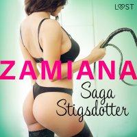 Zamiana - opowiadanie erotyczne - Saga Stigsdotter