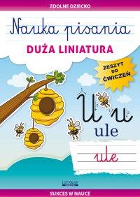 Nauka pisania. Duża liniatura - Beata Guzowska