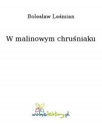 W malinowym chruśniaku - Bolesław Leśmian