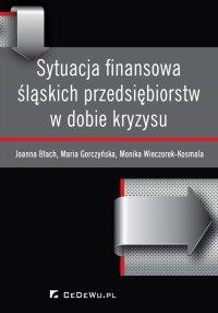 Sytuacja finansowa śląskich przedsiębiorstw w dobie kryzysu - Joanna Błach