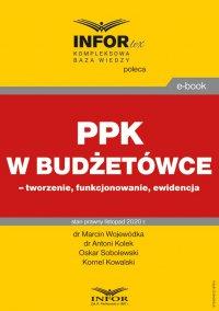 PPK w budżetówce – tworzenie, funkcjonowanie, ewidencja - Marcin Wojewódka
