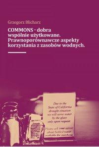 COMMONS - dobra wspólnie użytkowane. Prawnoporównawcze aspekty korzystana z zasobów wodnych - Grzegorz Blicharz