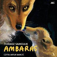 Ambaras - Tomasz Samojlik