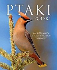 Ptaki Polski - Dominik Marchowski