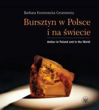 Bursztyn w Polsce i na świecie - Barbara Kosmowska-Ceranowicz