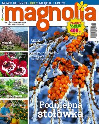 Magnolia 1/2016 - Opracowanie zbiorowe