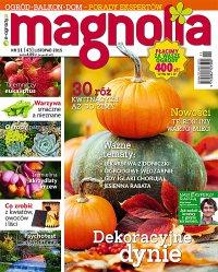 Magnolia 11/2015 - Opracowanie zbiorowe